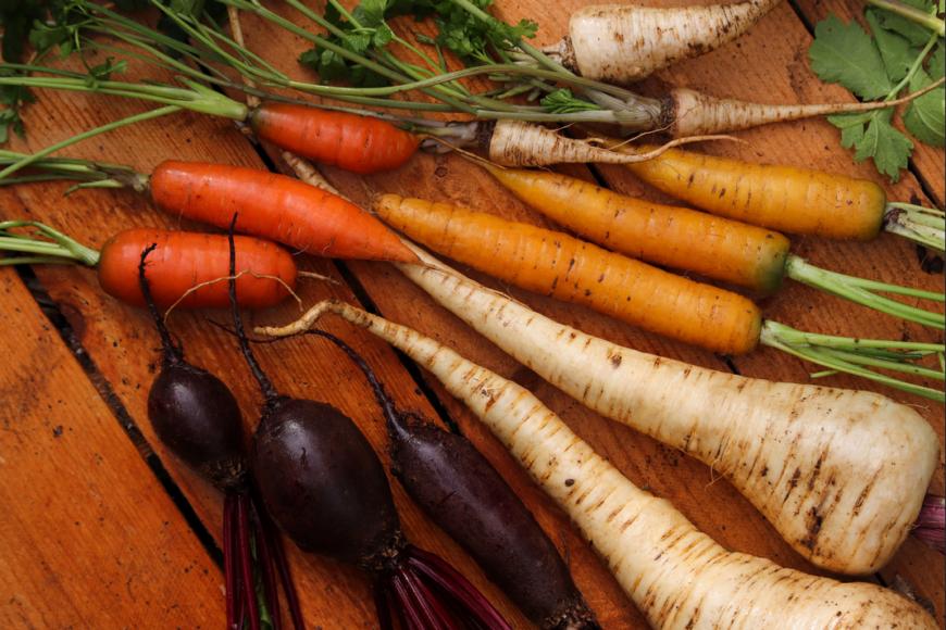 """(Italiano) """"Siamo quello che mangiamo"""": cinque ragioni per scegliere cibo di qualità e a km 0"""