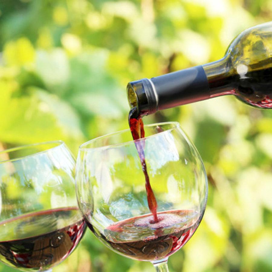 vino rosso nobile montepulciano