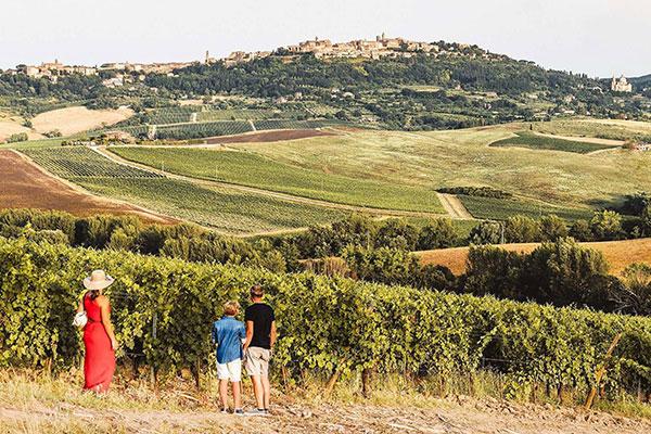 tour del vino montepulciano